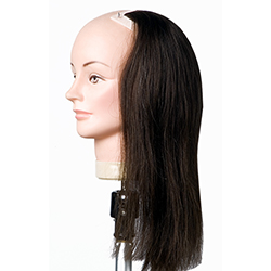Hairdressing Mannequins Mannequin Heads